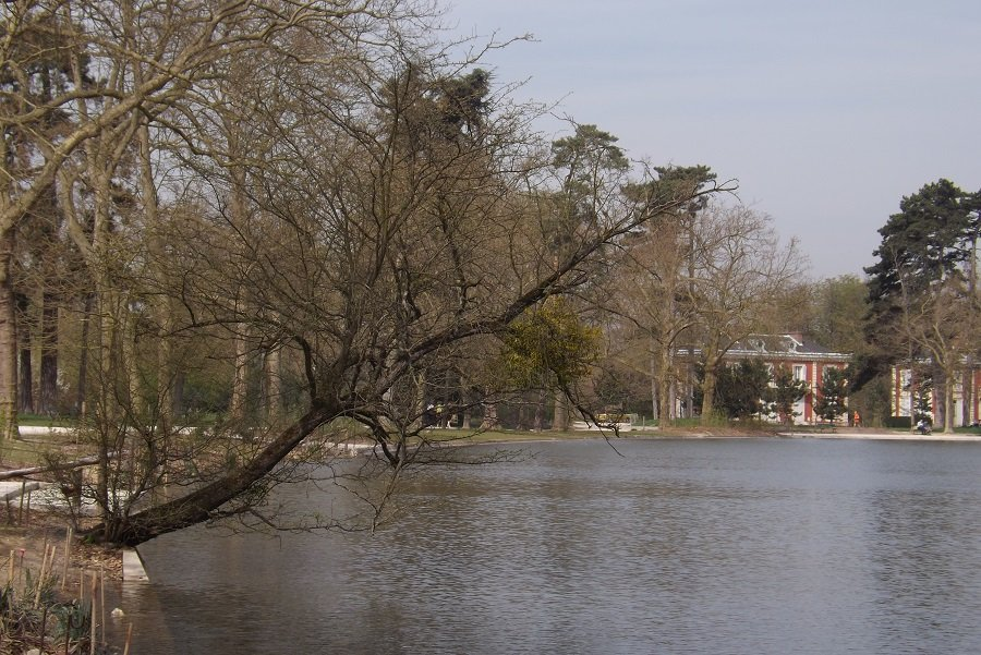 bois de vincennes lac minimes 2
